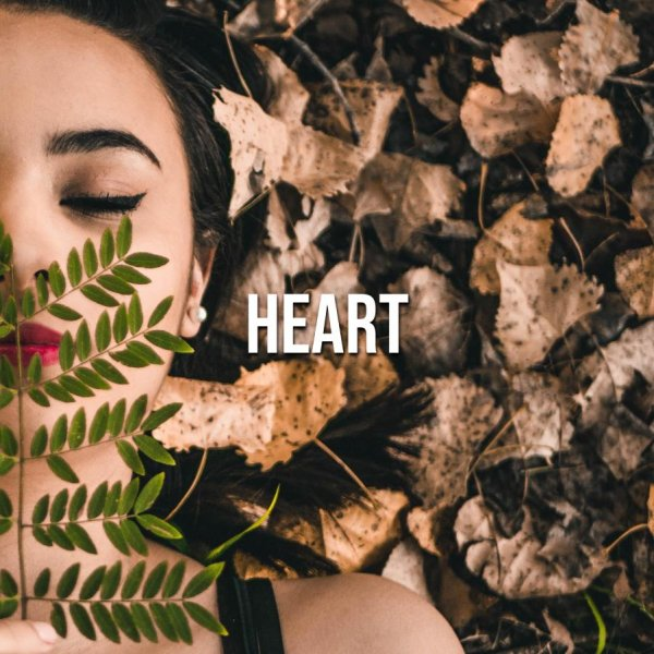 Heart (+Vox) | Pop, Lyric, Rnb | 88 BPM